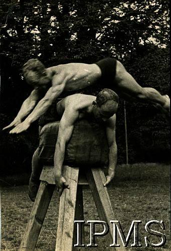 Largo House Malpy Gaj Gymnastics 05 - Pommel Horse - Karta 2239 - Web