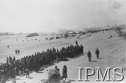 More new arrivals on the beach at Pahlevi 1942
